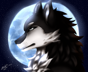 Wolf of the moon by XxHaruSuzukixX