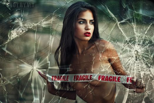 I Told You I Was Fragile by Piddling