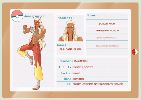 Blaziken App Final by caspianknight