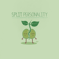 Split Personality by NaBHaN