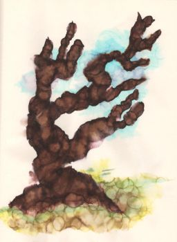 The first tree by JCallius