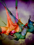 Psychedelic Brugmansia by themasterofnone