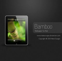 Bamboo for iPad by mariesturges