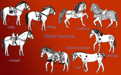 ethnic equine costumes by Refiner