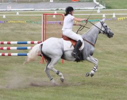STOCK Showjumping 471 by aussiegal7
