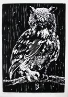 creatures of the night, Owl by StoryTellerF