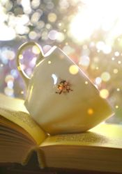 Cup of bokeh by Floreina-Photography