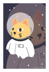 2 Space 2 Cat by UrLogicFails