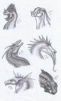 Dragon heads 2 by Dragonlover92