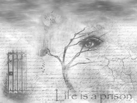 Life is Prision by fscoto