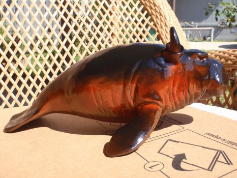 Manatee In the sun by hellgnome