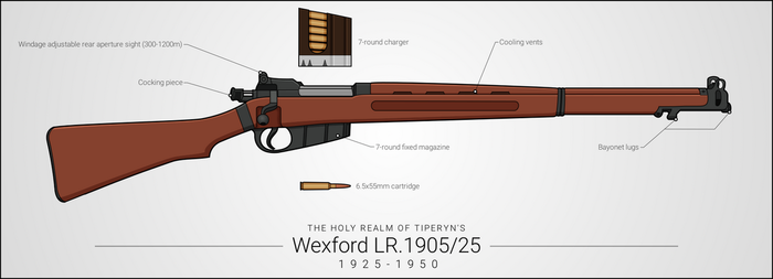 Wexford LR.1905/25 Bolt-Action Rifle by graphicamilitare