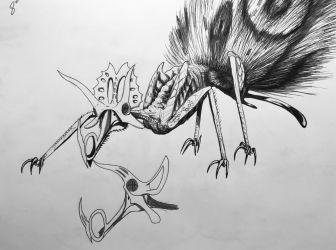 Insectosaur triceratop by PinkAndScary