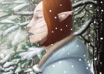 Winter came by Asderuki