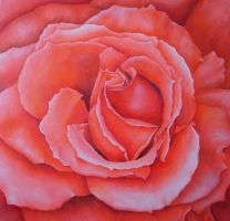 Square Rose by Artman225