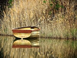 Lake still life... by Csipesz