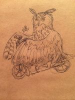 Scooter Owl by velvetrwings