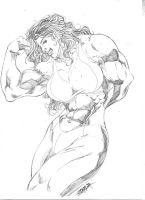 Sketch Commission Oct 09 by JeanSinclairArts