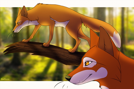 Fox and Vixen by BlueHunter