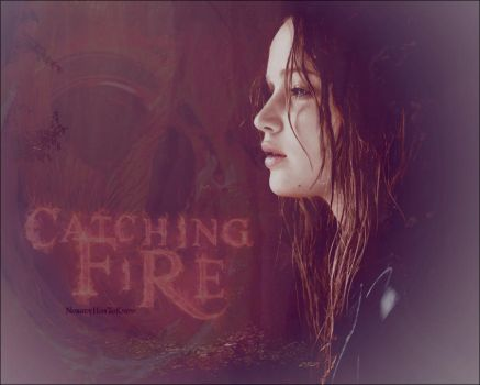 Catching Fire by NobodyHasToKnow
