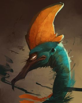 Cassowary by CoconutMilkyway