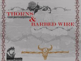 Thorns and Barbed Wire by indodreamin