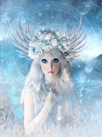 Ice Lilly by Selenys