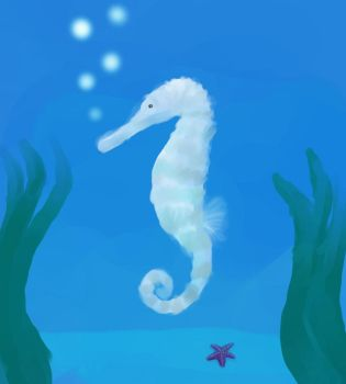 Seahorse by linceoscuro