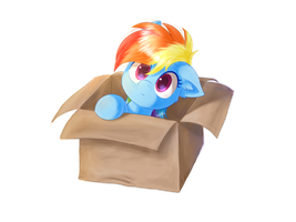 My Little Dashie by Kaliner123