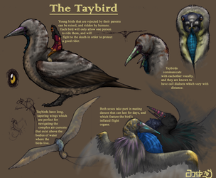 Completely Unofficial Taybird by aireona93