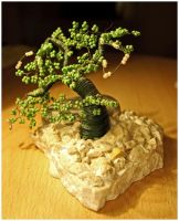 bonsai by loffy