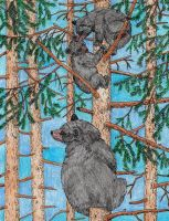 Black Bear by WiccaSmurf