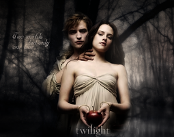 Twillight Artwork by Dwynariel
