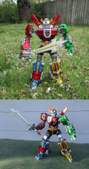 VOLTRON: Defender of the Back Yard by Unicron9