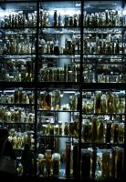 Berlin Museum: Room of Obscure by Roydz
