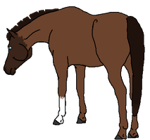 Horse Commission Example by Adoption-R-Us