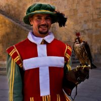 The Falconer by ruthsantcortis