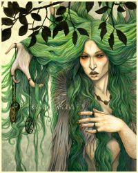 The Wood Witch by SerenaVerdeArt