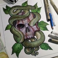 Skull And Snake by JakeMorrison