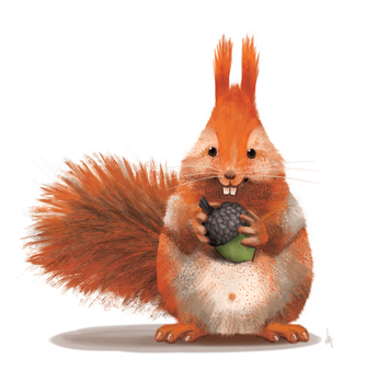 A squirrel and his nut by Lite-mike