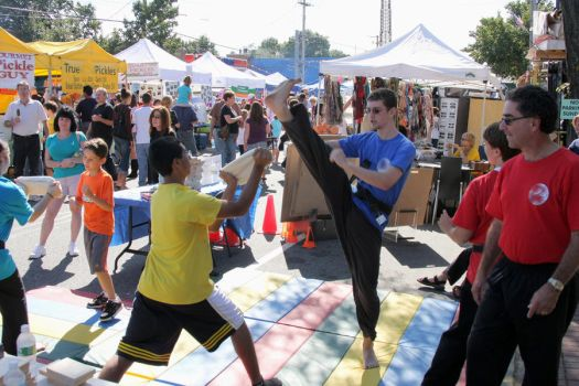 Karate Day at Street Fair 11 by quietstorm2