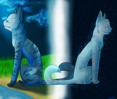 I will wait for you forever, Jays Wing by whisker-star