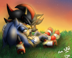 Sonadow for SR12 - Remember the Simpler Days by BlueNeedle-Inu