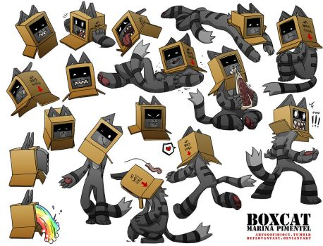 Character: Boxcat by Reflovantasy