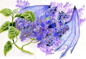 Lilacs by Hbruton