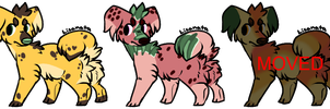 CLOSED by Woofwoof-adopts