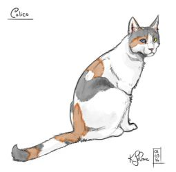 30 Day Story-Sketch Challenge: Day 6: Calico by Dreamspirit