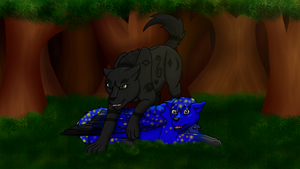 Shadow Wolf, Firefly, and Midnight by horse14t