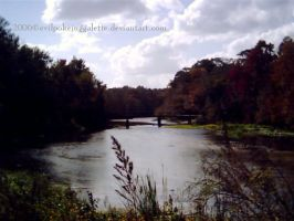 River Scenery by evilpokejuggalette