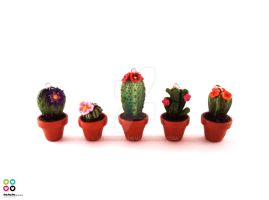 Cactuses by Selmmma